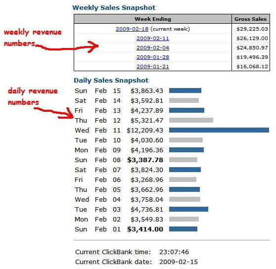 daily business revenue from 1 website